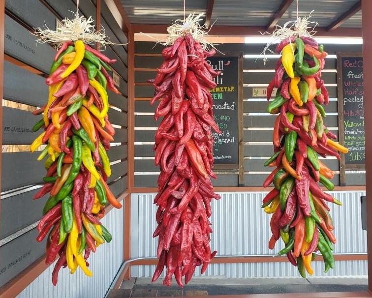 2ft Chile Ristra - Seasonal